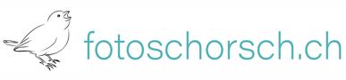 fotoschorsch.ch